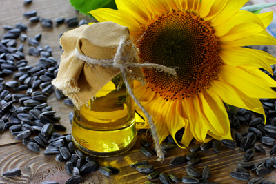 sunflower oil manufacturing cost